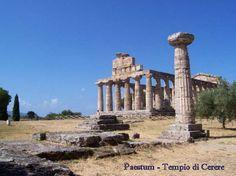 Archeologia - Un'escursione a Paestum Questi imponenti Templi, quasi intatti, e le vestigia di importanti monumenti, fanno di Paestum la meta di turisti provenienti da tutto il mondo che trovano anche la possibilità di visitare il museo  #lucani #paestum #poseidonia #sibari