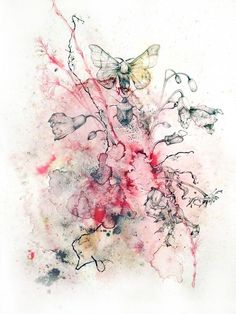 Moth, Bug and Seaweed :   Media: Pen and Ink, biro and graphite on Mangani paper  Size: 113cm x 88cm  ...