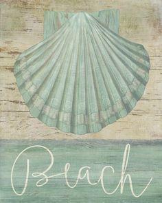 Beach Shell (Beth Albert)