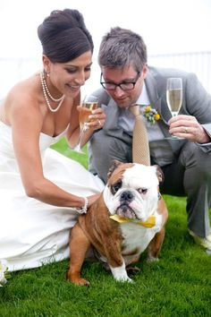 Or This For The Drako Baby Don T Forget Your Furry Best Man On Fireman Weddingwedding Dogsbulldog Puppieswedding Yellowenglish