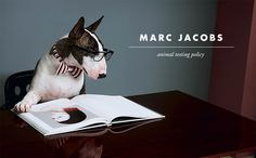 Why Marc Jacobs Beauty Is Cruelty-Free (An Overview Of Licensing In The Beauty Industry) | Cruelty-Free Kitty
