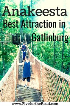 Anakeesta Gatlinburg Must Be Part of Your Tennessee Family Vacation : Anakeesta is one of the best attractions in Gatlinburg, Tennessee. Read more about why your family will love it at Five for the Road. Gatlinburg Attractions, Gatlinburg Vacation, Tennessee Vacation, Vacation Trips, Vacation Spots, Vacation Destinations, Vacation Ideas, Gatlinburg Tn, Family Vacations