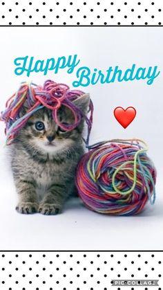 My Second Favorite Happy Birthday Meme Happy Birthday Animals, Happy Birthday Wishes Cards, Birthday Blessings, Happy Birthday Pictures, Happy Birthday Sister, Happy Birthday Funny, First Birthday Party Favor, Cat Birthday, Animal Birthday