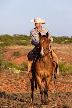 America's biggest ranch The Waggoner on sale for $725m in Texas