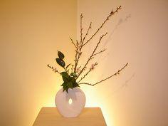 Peach branches and camellia | Flickr: partage de photos!