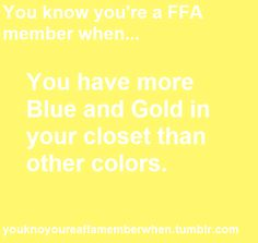 actually they are PINK FFA tshirts! (: