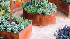 Small Backyard Ideas for an Edible Garden, – Gardening for beginners and gardening ideas tips kids Veg Garden, Edible Garden, Garden Planters, Buy Flowers Online, Buy Plants Online, Backyard Landscaping, Backyard Ideas, Garden Ideas, Garden Tips