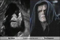 "HAHAHAHA, ""Emperor Fetus"" 😂"