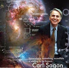 The Cosmos Made Conscious