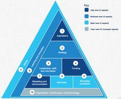 McKinsey & Company Organizational Capacity Assessment Tool