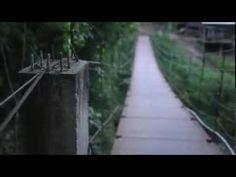 Chiang Mai Eco Lodge + Elephant Tours| Chai Lai Orchid