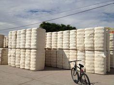 Fardos de algodón Grupo Ritex. Fabrica La Rioja.