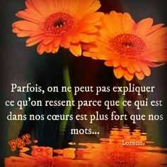 Plus Belle Citation, Tu Me Manques, French Quotes, Good Vibes Only, Self Development, Positive Affirmations, Love Of My Life, Decir No, Love Quotes