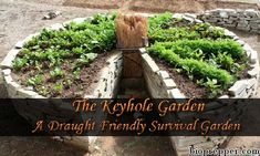 The keyhole garden was developed for the sole purpose of maximum crop output in the hottest and driest of conditions.Their low cost, low maintenance and ver
