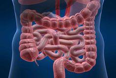 segni di un intestino poco sano
