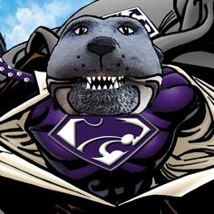 Kansas State Football, Kansas State University, Football Team, Bill Snyder, All Things Purple, College, Fan, Kappa, Schools