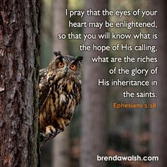 Ephesians 1:18 Ephesians 1, I Pray, Bible Scriptures, Prayers, Spirituality, Faith, Heart, Ideas, Beans Recipes