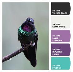Tourmaline Sunangel paint colors by Sherwin-Williams