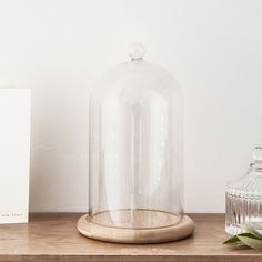 Glass Cloche Bell Jar Display Dome with Bamboo Base - Great for Collectibles  #Lights4funInc