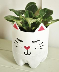 Pot à plante intérieure chat DIY