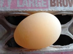 Tilly's Nest: An Egg Without A Shell- reasons for eggs with missing shells in backyard chickens