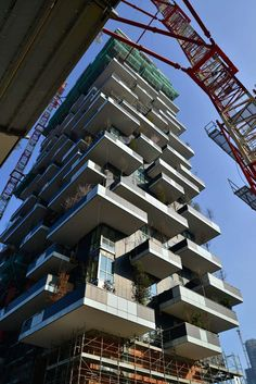 News from the construction site_10 // Vertical Forest, Milan « stefano boeri #terrassen