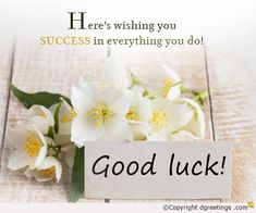 Good Luck Messages, Good Luck Wishes, Best of Luck Messages, Success Wishes Good Wishes Quotes, Good Luck Quotes, Good Luck Wishes, Wish Quotes, Love Me Quotes, Good Morning Quotes, Success Wishes, Success Quotes, Best Of Luck Messages