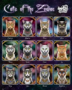 Cats of the Zodiac