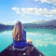 This place #emeraldlake makes you realize how beautiful this world is! It's just breathtaking and I feel so grateful. #banff  #yohonationalpark #canada #lifewithdogs #pomeranian #moccaccinoboi 太陽に反射した氷河に含まれる岩粉が鮮やかなエメラルドブルーに輝く#エメラルドレイク 自然の美しさに感謝。地球って美しいね。#バンフ #ヨーホー国立公園 #カナダ #犬のいる暮らし #ポメラニアン #モカチノボイ