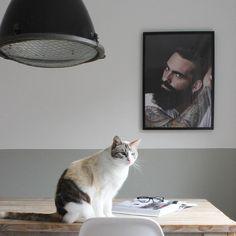 @huisjeaandehaven Scandinavian, Homes, Cats, Instagram Posts, Animals, Houses, Gatos, Animales, Animaux