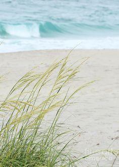 ✯ At The Beach