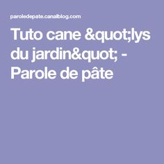 """Tuto cane """"lys du jardin"""" - Parole de pâte"""