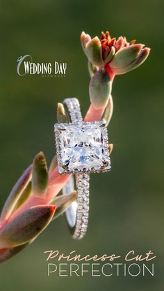 A contemporary twist on the classic halo engagement ring, our exclusive 1-1/4ct princess cut ECO 4 lab grown diamond is surrounded by a delicate halo that peeks out from underneath the center stone and is completed with 3/8ctw of pave set diamonds down the shank.