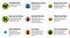Common MythConceptions ~ No, Napoleon isn't short, the Great Wall of China isn't visible from space, and Einstein was awesome at math.