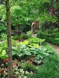 No mowing, pond, path and lovely shade garden