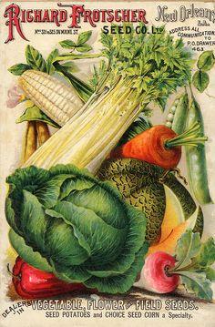 My Paisley World: Appreciating Vintage Vegetable Seed Catalogs Vintage Diy, Images Vintage, Photo Vintage, Vintage Labels, Vintage Postcards, Vintage Ephemera, Vintage Style, Garden Catalogs, Seed Catalogs