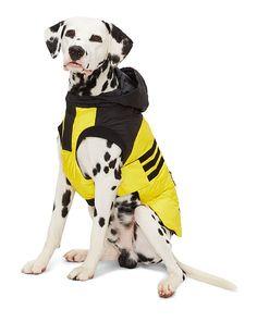 Hooded Dog Parka - Ralph Lauren Pet For the Pet - RalphLauren.com