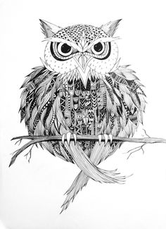 Sketch: Owl by Emel Mutlucan, via Behance #Owl #Art #AnimalArt