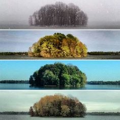 Perfeita natureza.