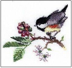 Chick Berry - Cross Stitch Pattern