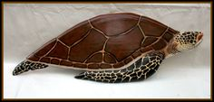 SEA TURTLE wood carving, beach marine art, marine life wood carving, ocean art, marine wildlife carving 32 inches. on Etsy, $100.00