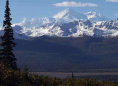 Alaska Nature Guides - Denali Wilderness Hike