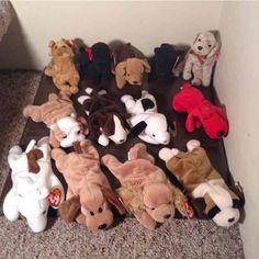 feaec714e2f LOT 13 NWT Ty DOG Beanie Babies Dog Beanie