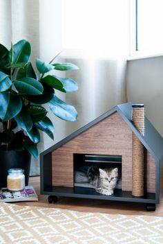 TERRACE Cat Cave / Bed Furniture image can find Cat furniture and more on our website. Cat House Diy, House For Cats, House Dog, Pet Furniture, Modern Cat Furniture, Scandinavian Cat Furniture, Furniture Showroom, Refurbished Furniture, Farmhouse Furniture