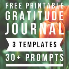 How to start a gratitude journal practice & attract more happiness, abundance, & success in your life: 3 free printable templates with 30 ideas & prompts, some are great for kids! – A Piece of Rainbow Herb Garden In Kitchen, Veg Garden, Vegetable Garden Design, Garden Trellis, Garden Beds, Shade Plants Container, Container Flowers, Container Gardening, Printable Templates