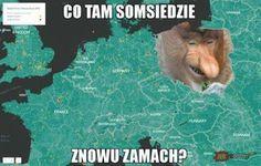 Malpa Janusz-Znowu zamach somsiad