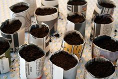 paper pots to make transplanting less disruptive, just set the whole thing in the ground,and the paper dissolves. Paper Pot, Diy Paper, Food Program, Garden Of Earthly Delights, Greenhouse Growing, Garden Drawing, Seed Paper, Spring Plants, Seed Packets