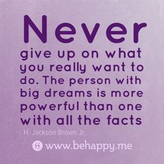 Never give up on what you really want to do. The person with big dreams is more powerful than one with all the facts