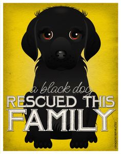 A Black Dog Rescued This Family yes that would be our Auggie and Sami.