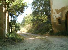 Camino del Rosel